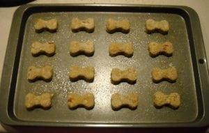 apple-dog-treats