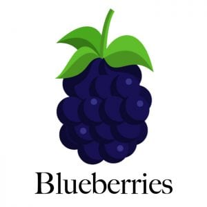 blueberries-dogs