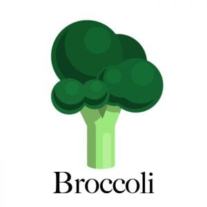 broccoli-dogs