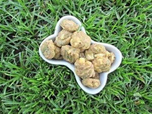 A batch of cucumber parmesan chicken dog treats for your puppy to enjoy.