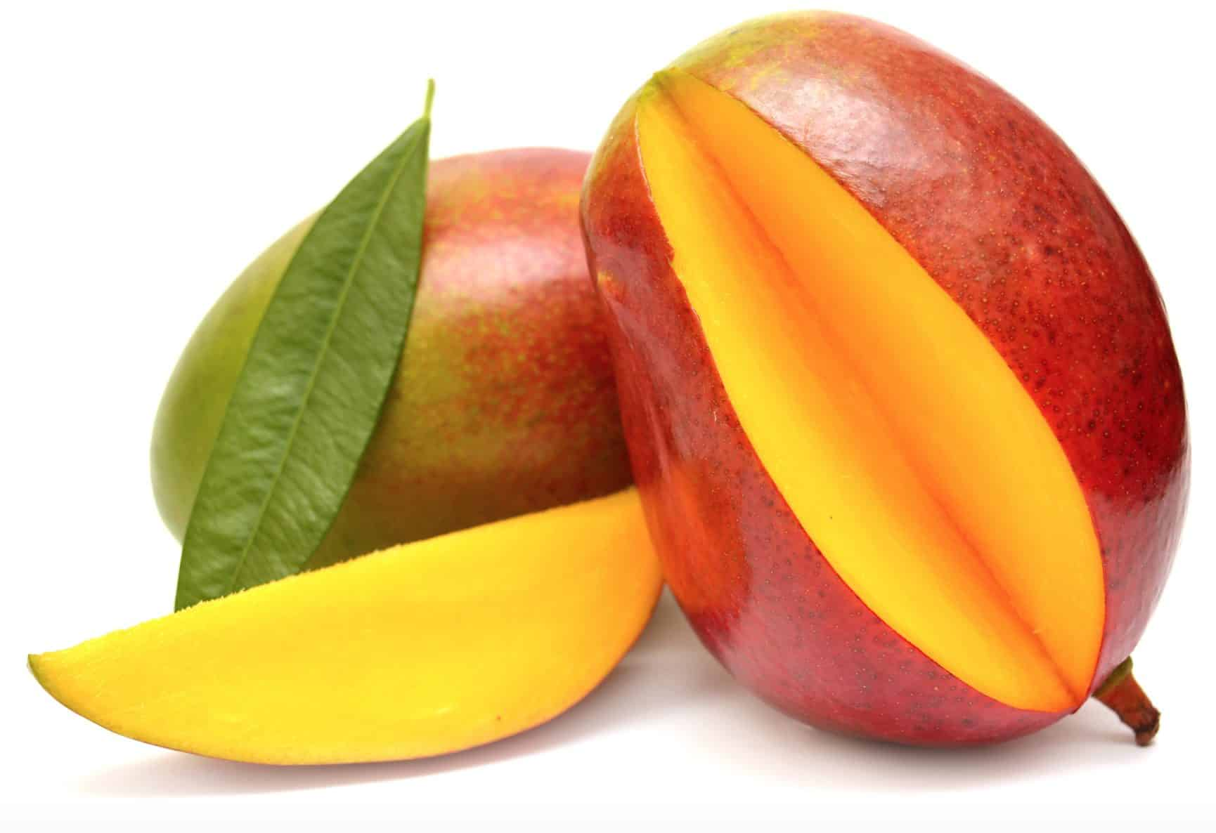 Mangoes are super dog foods that provide a plethora of health benefits for dogs.