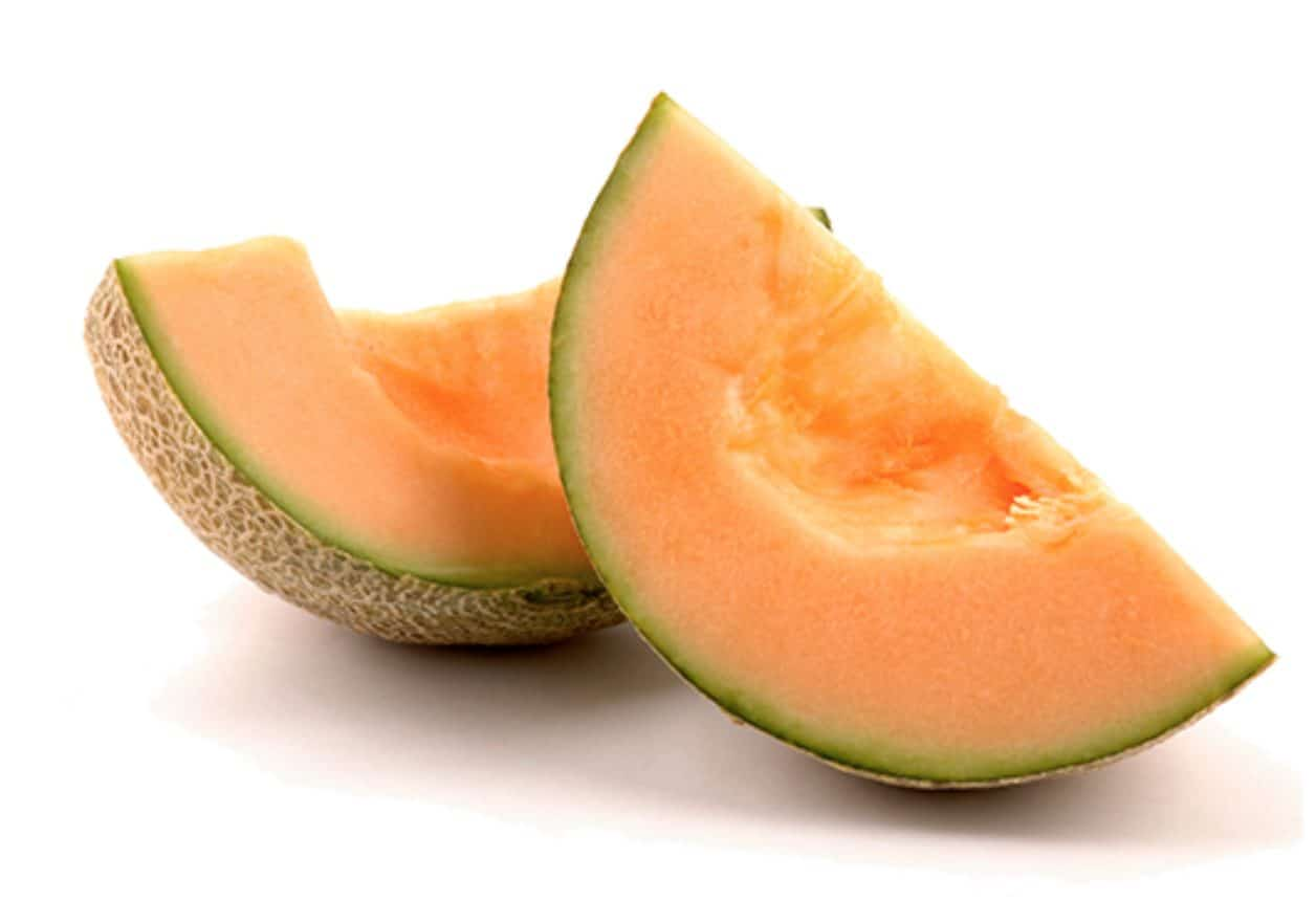 Feeding your dog cantaloupes can provide them with a lot of great health benefits.