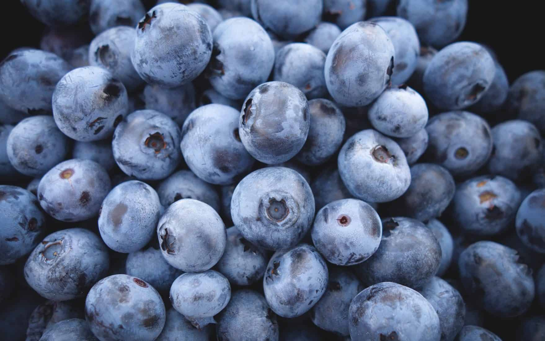 Dog owners should be cautious, as side effects may occurs from dogs eating blueberries.