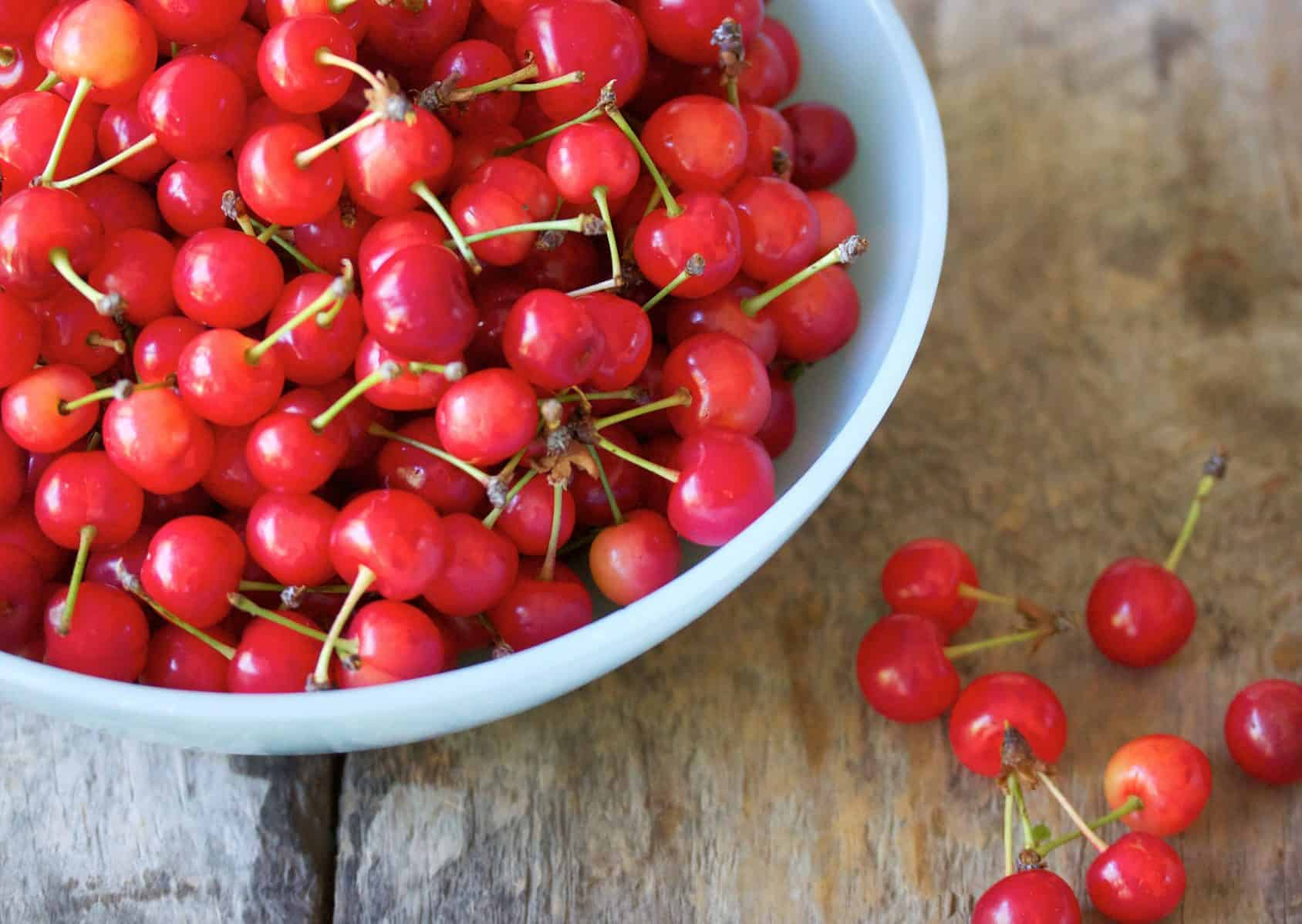 If dogs eat too much cherry, they may have negative side effects.