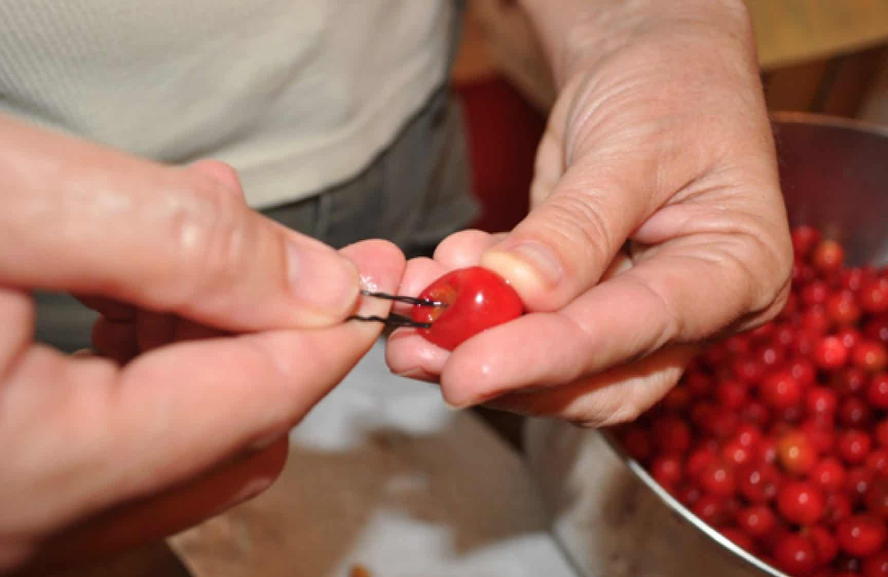 Cherries need preparation before dogs can eat them.