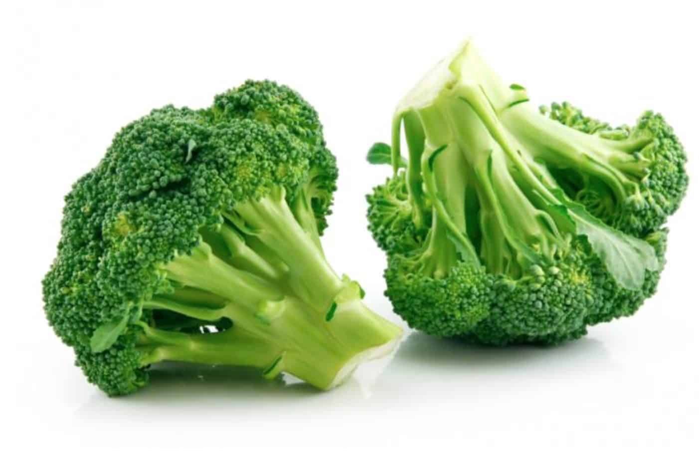 If you feed your dog broccoli, they may experience several amazing health benefits.