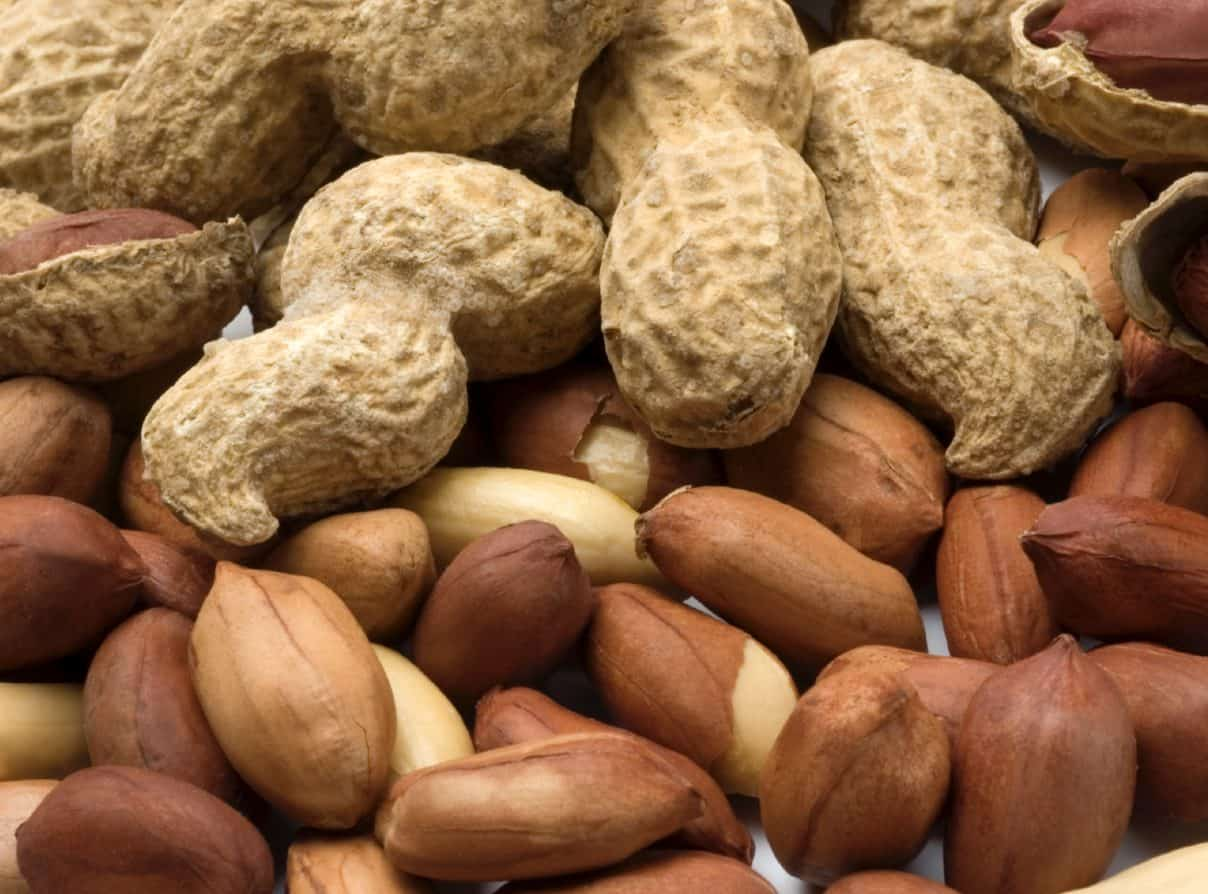 There are many risks and ride effects that may arise when your dog eats peanuts.