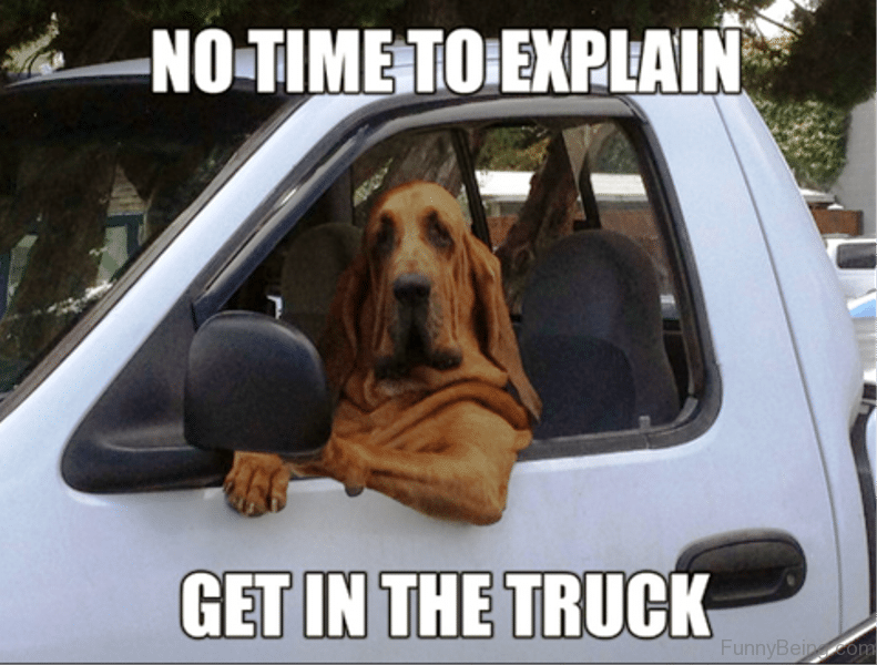 Funny Puppy Memes: 100 Funniest Dog Jokes Of The Internet (FUNNY DOG HUMOR