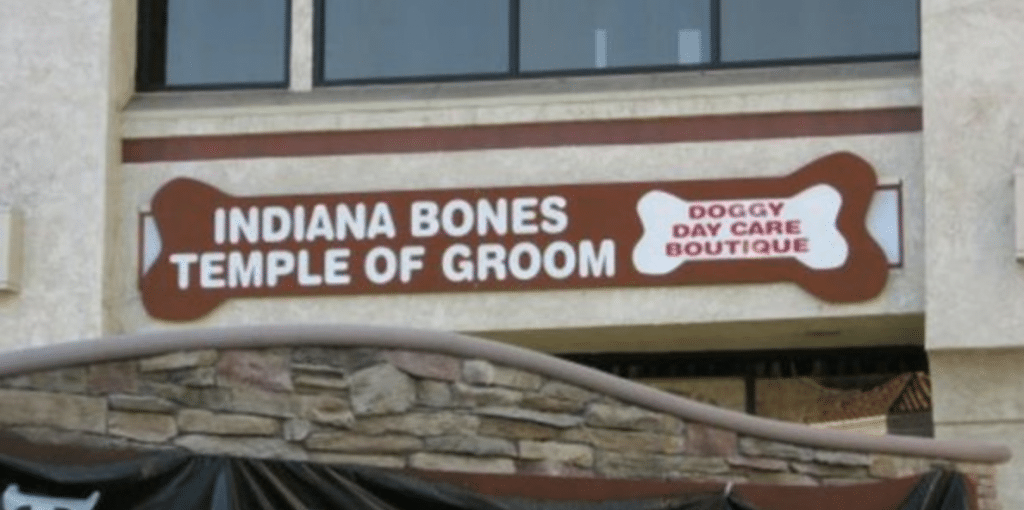 Indiana Bones and the Temple of Groom - Dog Grooming