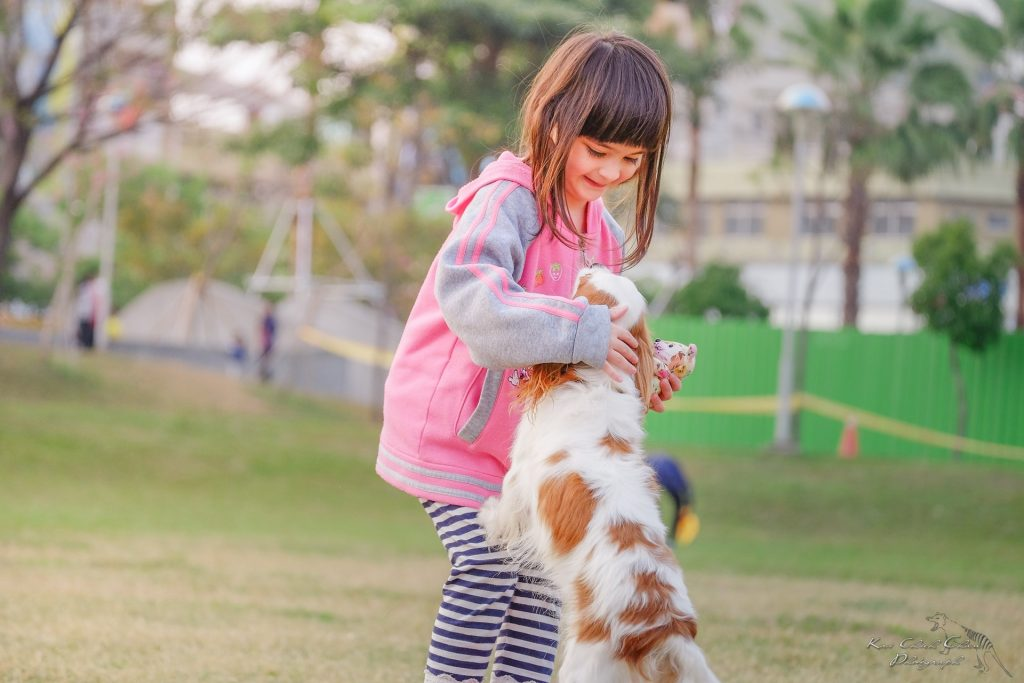 Hypoallergenic dog breeds will be the savior of ultra-sensitive dog owners.