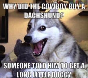 Why did the cowboy buy a dachshund?