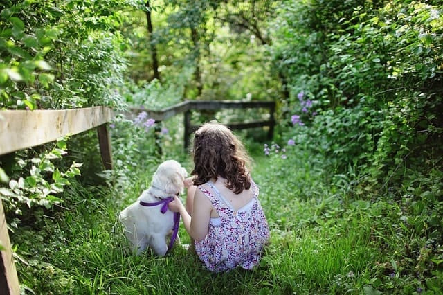 Golden Retrievers are fantastic play mates for small children, though you should still supervise.
