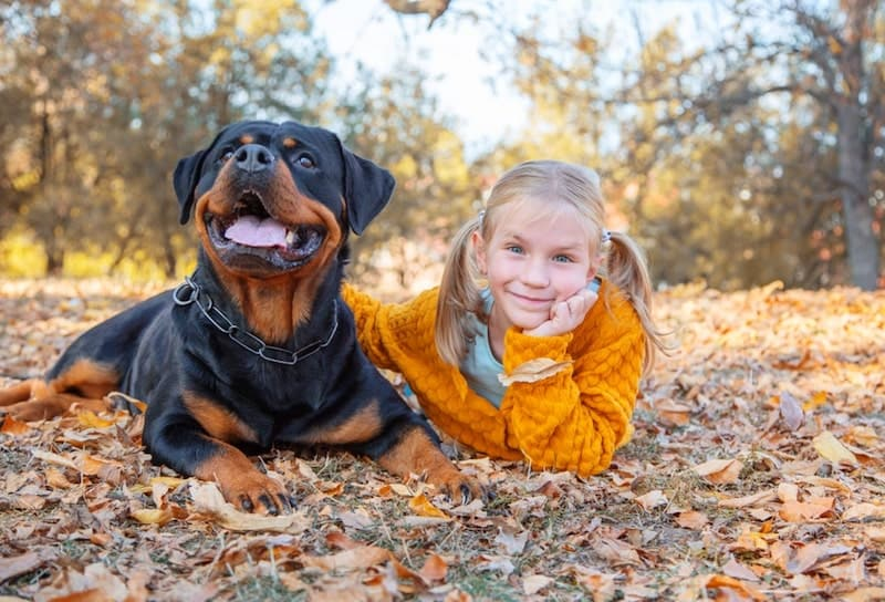 Are Rottweilers Good with Kids? - The Pros & Cons of Rotties