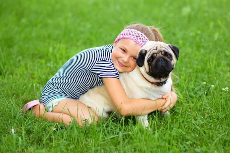 A child with her Pug.